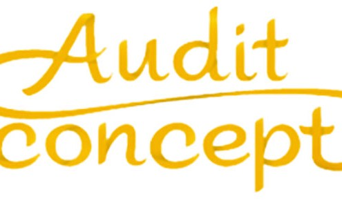 audit-concept-articlelancement